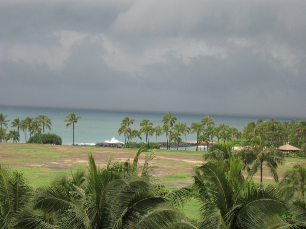 Here Comes the Storm Oahu