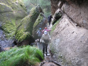wet_rocks_pinnacles